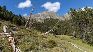 «Biosfera Val Müstair»: Nun schaltet sich der Kanton ein