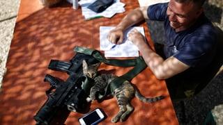 Waffen ruhen in Gaza – noch