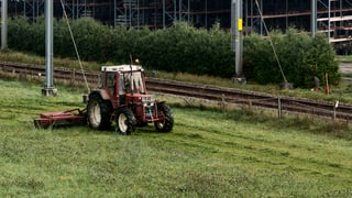 Nahrungsmittel statt Ökoflächen: Aargauer Bauern wehren sich