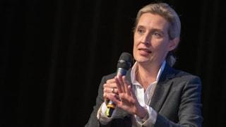 AfD-Fraktionschefin Alice Weidel unter Druck