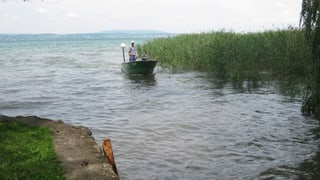 Bodenseefischer spannen zusammen