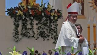 Chilenische Bischöfe bieten Rücktritt an