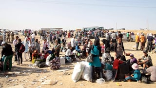 Schweiz nimmt 500 Kontingentsflüchtlinge auf