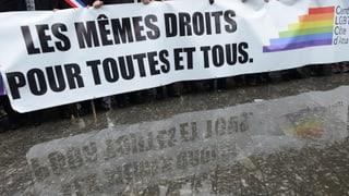 Tausende Franzosen demonstrieren für Homo-Ehe