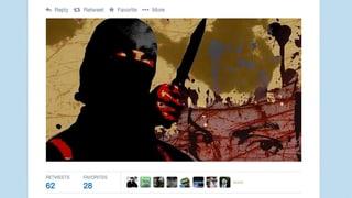 Cumbatter da cuminanza propaganda per terror en l'internet