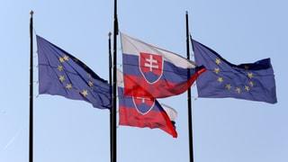 «Orban missbraucht die Visegrad-Gruppe für seine Ziele»