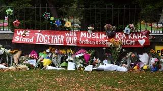 Terrorforscher kritisiert Internetkonzerne