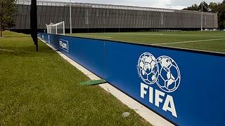 Der Fifa-Fall: Soll die Politik härter durchgreifen?