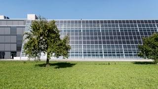 Subventionen für Solarstrom sind begrenzt