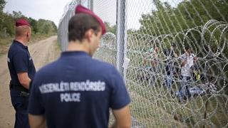 Ungarische Polizei soll Migranten schwer misshandelt haben