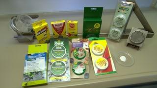 Ameisenköder im Test: Einige Produkte taugen wenig