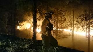 Waldbrand auf Kanareninsel: Deutscher Tourist bleibt in Haft