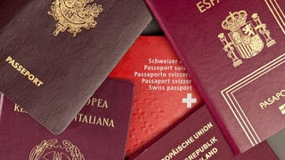 Zürcher Polizei soll Täter-Nationalität nicht mehr nennen