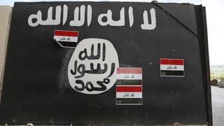 12 Schweizer liessen im Dschihad ihr Leben