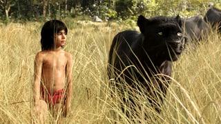 «The Jungle Book»: Mehr Spannung – weniger Gemütlichkeit