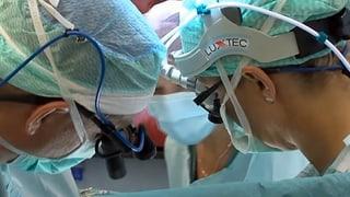 Lesen Sie hier mehr über Gebärmutter-Transplantationen.