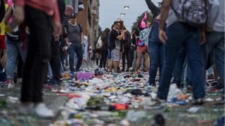 Die Streetparade grünt sich auf