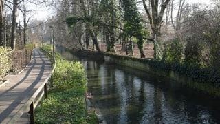 Scharfe Auflagen für mögliches Kraftwerk am St.-Alban-Teich