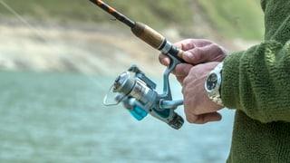 Nicht mehr Geld für Solothurner Fischer