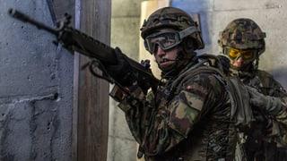 SP will schlanke Armee – Mitteparteien winken ab