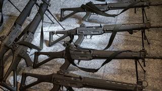 FDP-Sicherheitspolitiker kippen beim Waffenrecht