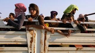 «Die Jesiden stehen unter einem kollektiven Schock»