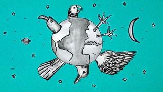 Amsel, Drossel, Fink und Phönix: Das Vogel-Kultur-Quiz