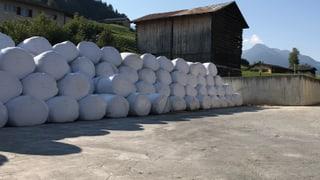 350 ballas da silo memia pauc
