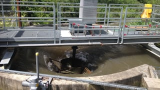 Wie gefährlich sind Wasserwirbel-Kraftwerke für Fische?