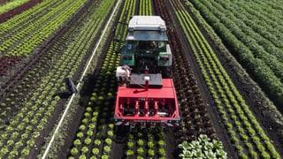 Der Nationalrat unterschätzt die Pestizid-Initiativen
