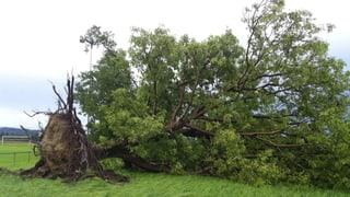 Grosse Schäden nach Unwetter im Aargau