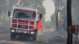 En il Portugal arda il guaud puspè