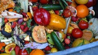 Müll-Taucher gegen Lebensmittel-Verschwendung