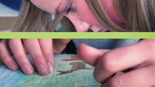 Wie Jugendliche Biodiversität sehen