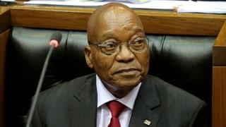 Zuma feuert unliebsamen Widersacher