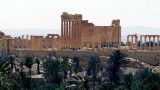 Nicht nur der IS ist eine Gefahr für die historischen Stätten