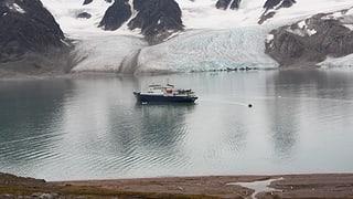 Mit dem Expeditionsschiff in die Polarregionen