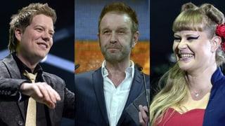 Das sind die Gewinner der «Swiss Music Awards 2014»