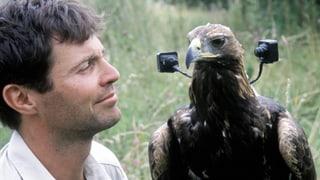 Video «Animal Camera: Hightech am Himmel (2/3) » abspielen