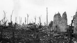 Die Folgen der «Urkatastrophe» des Jahrhunderts