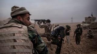 Anti-IS-Koalition nimmt neuen Anlauf zur Eroberung von Mossul
