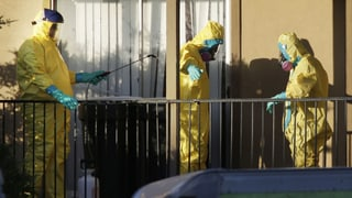 Ebola: In Sierra Leone stecken sich täglich Dutzende an