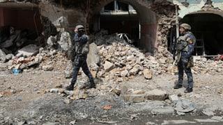 «Der IS ist ein Problem – auch ohne Kalifat»