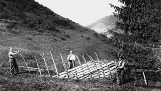 Seit 7000 Jahren gibt es Alphirten im Berner Oberland