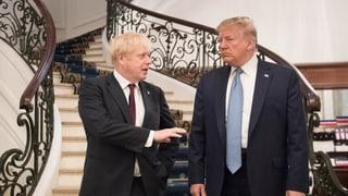 Per Trump è Johnson il dretg um per il Brexit