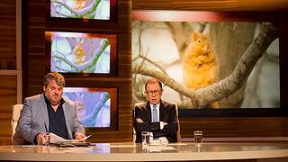Video «Mit Bligg und Stefan Heuss» abspielen