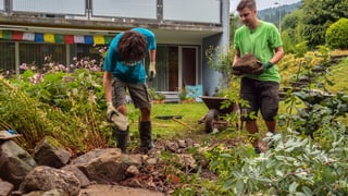 Dienstag: Der Garten wird tierfreundlich