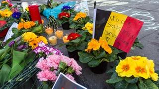 Bilder vom Terror in Brüssel