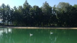 Natürliche Aue erleben in Rietheim
