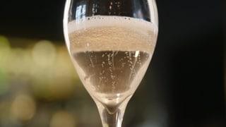 Prosecco-Degustation: Ein Quartett schäumt oben auf (Artikel enthält Video)